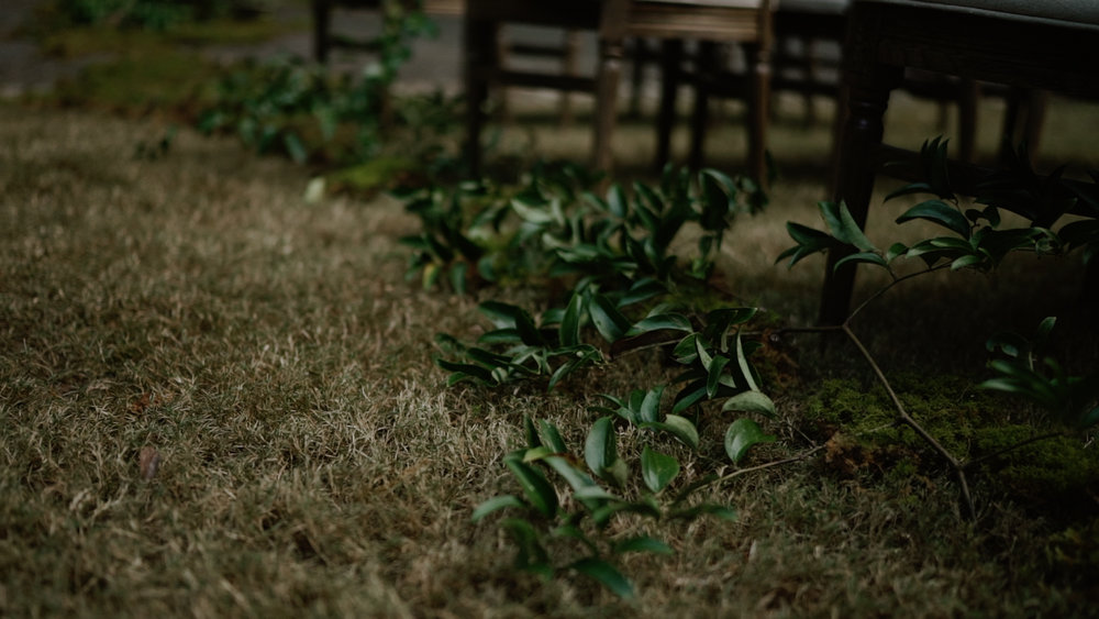 Film_Stills_25.jpg