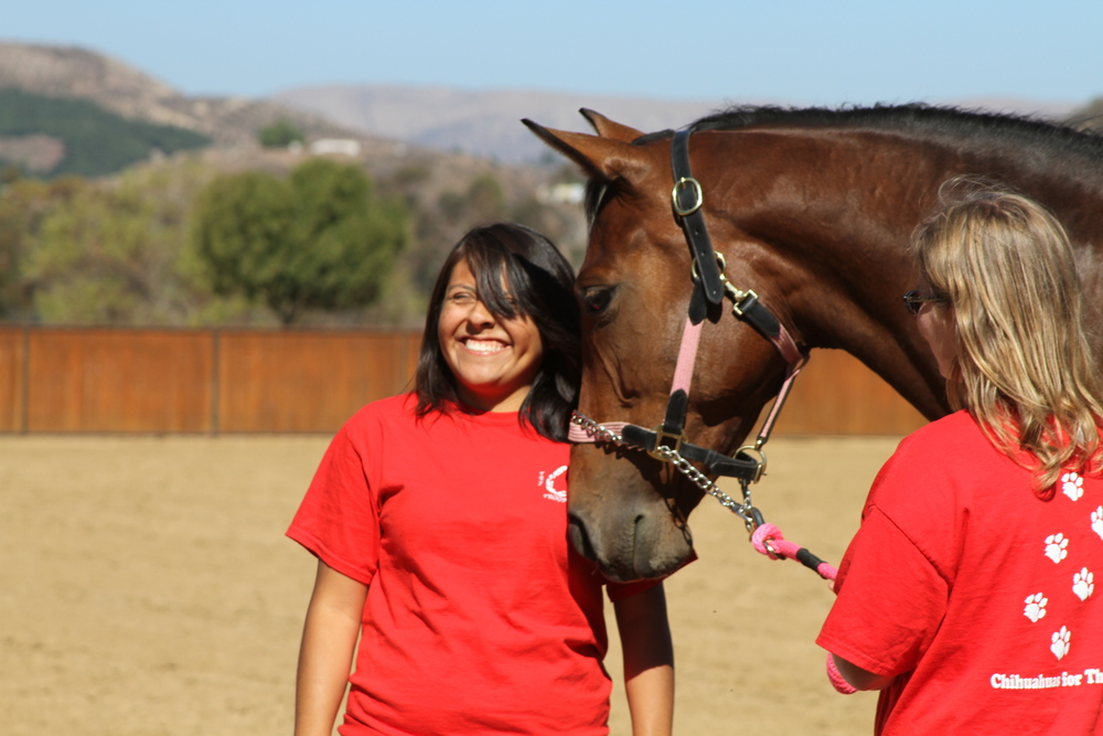TooSexyForMySaddle posing with volunteer Lidia. TooSexy has a deep desire to bond with people, like many thoroughbreds.