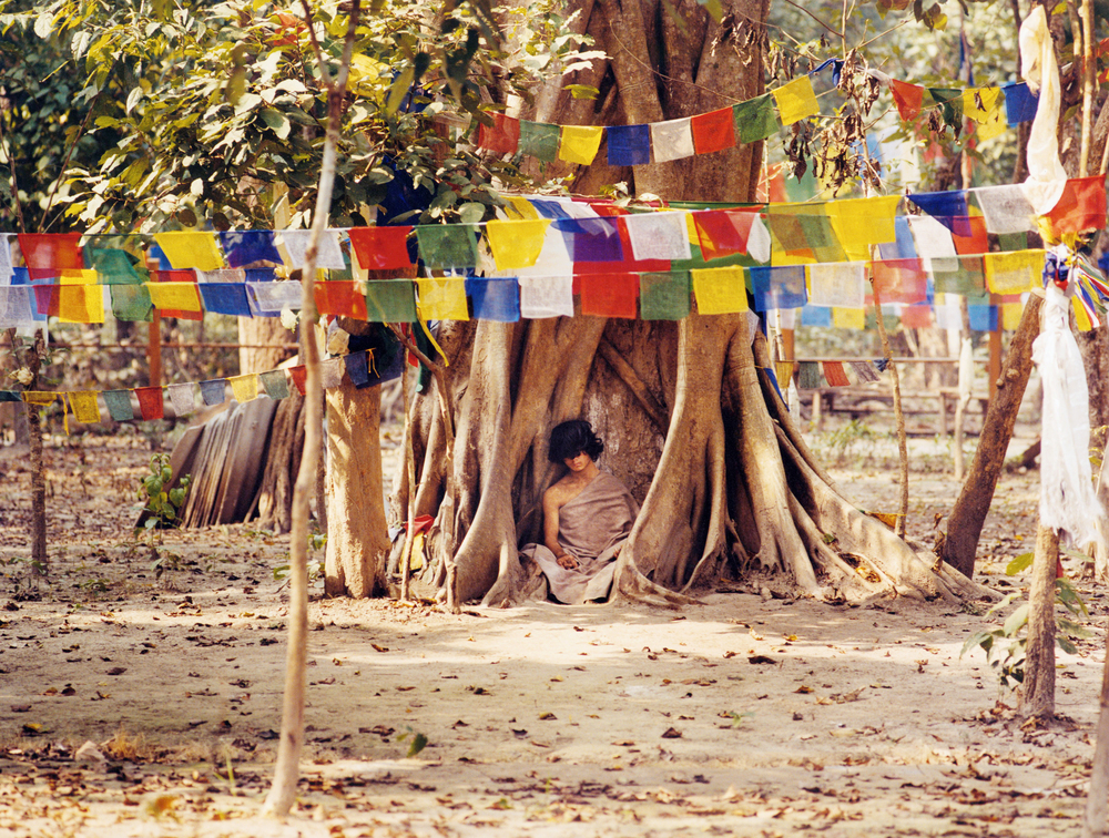 "The ""Buddha Boy"" Ram Behadur Bamjan - rumored to be the Buddha reincarnate, this sixteen-year-old boy meditated motionless under a pepal tree in a forest in Southern Nepal for nearly 9 months in 2006 - Bara Region, Nepal"
