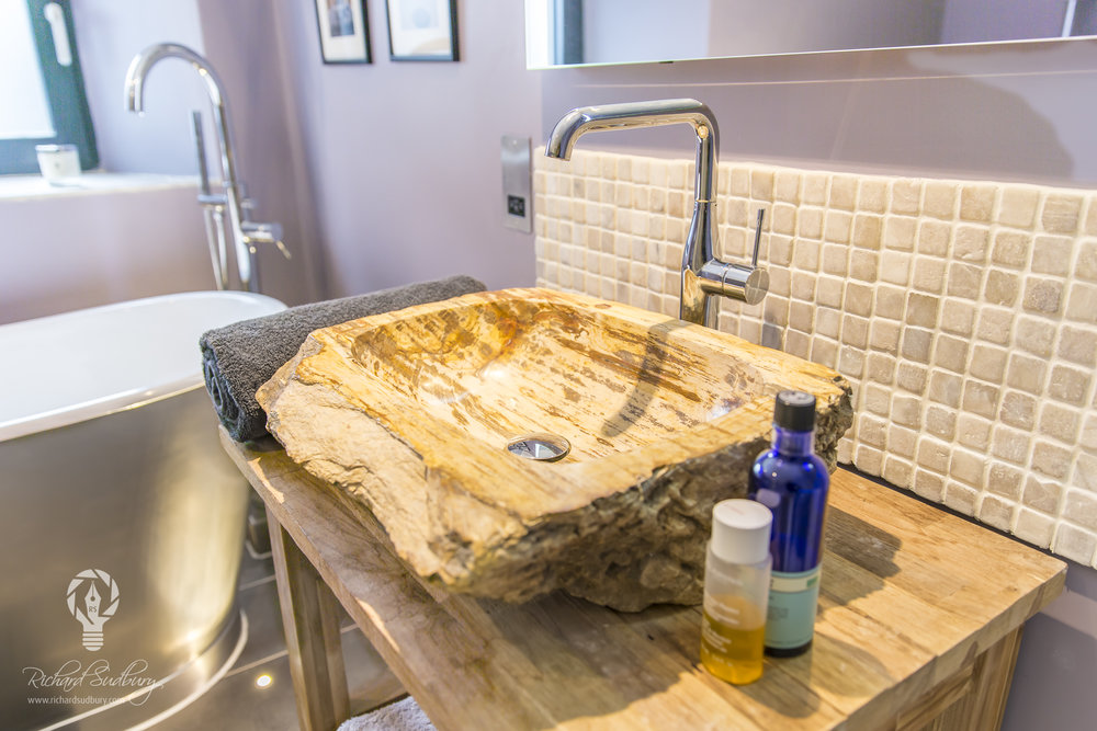 Fossilised Wooden Basin