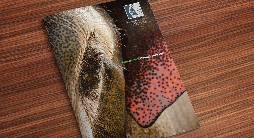 OREGON ZOO,  Campaign for Elephants