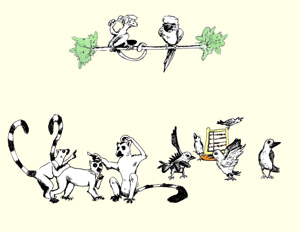 Hippo_lemurs-birds.jpeg