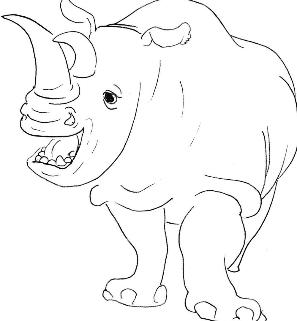 camel-rhino draft.jpeg