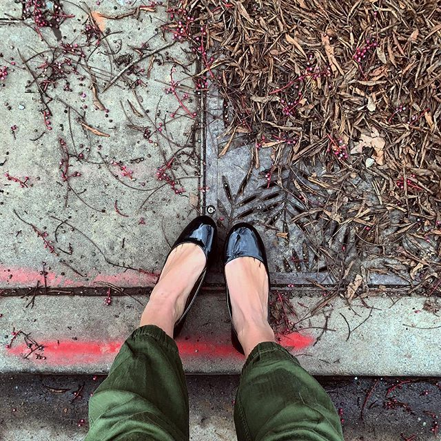 First morning post-winter-solstice-celebration magic. . . #FromWhereIStand #CaliforniaPepper #LookingDown #CitySidewalk #Sidewalk #Concrete #Pavement #BalletFlats #Detritus #Winter #Solstice #WinterSolstice #Transition