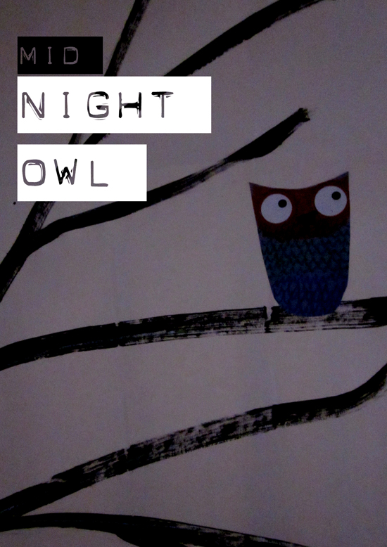 midnight_owl.jpg