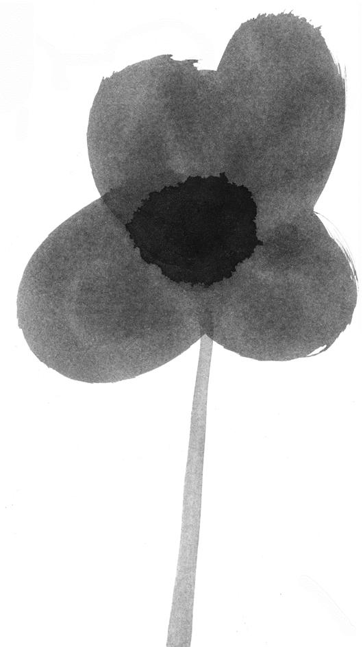 poppy_flower_2.jpg