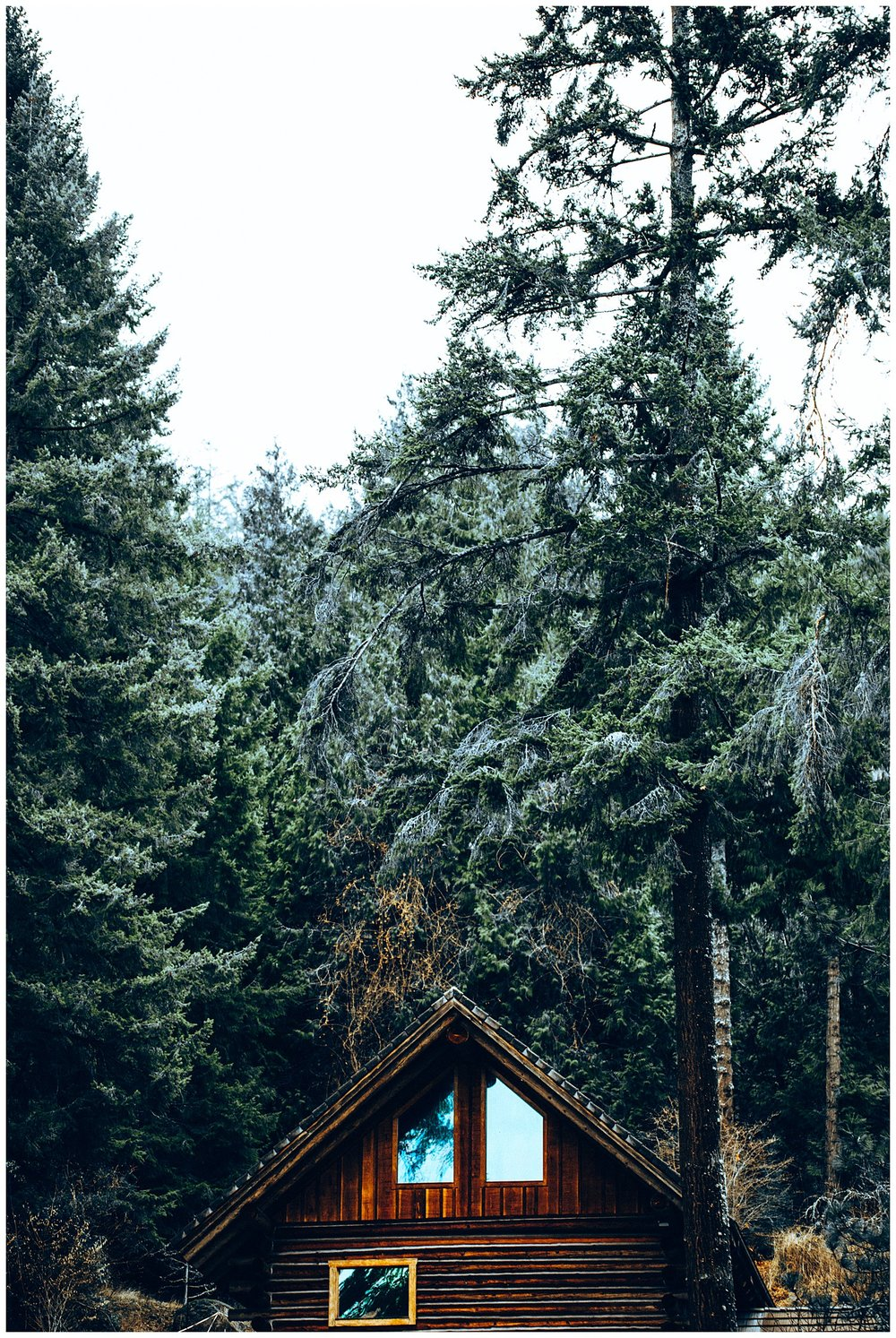 Chamonix Films - Seattle Music Videographer - Music Photography - cabin recording forest