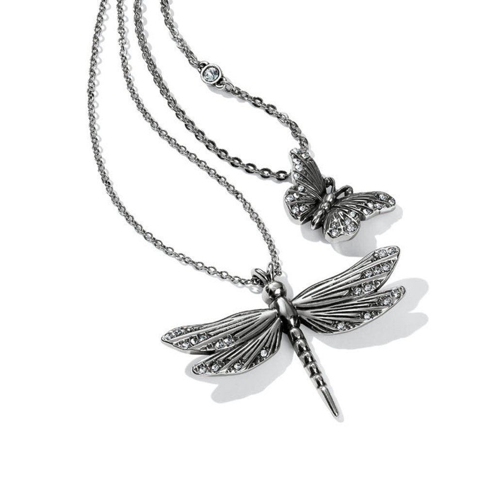 2019 02 01 dragonfly.jpg