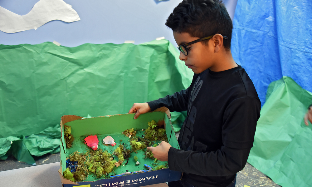 2015-2016 - Marco Velis Photographer - 6th Grade Biome Event  - 1229114.jpg