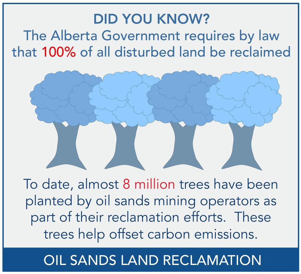 8 MILLIONS TREES.jpg