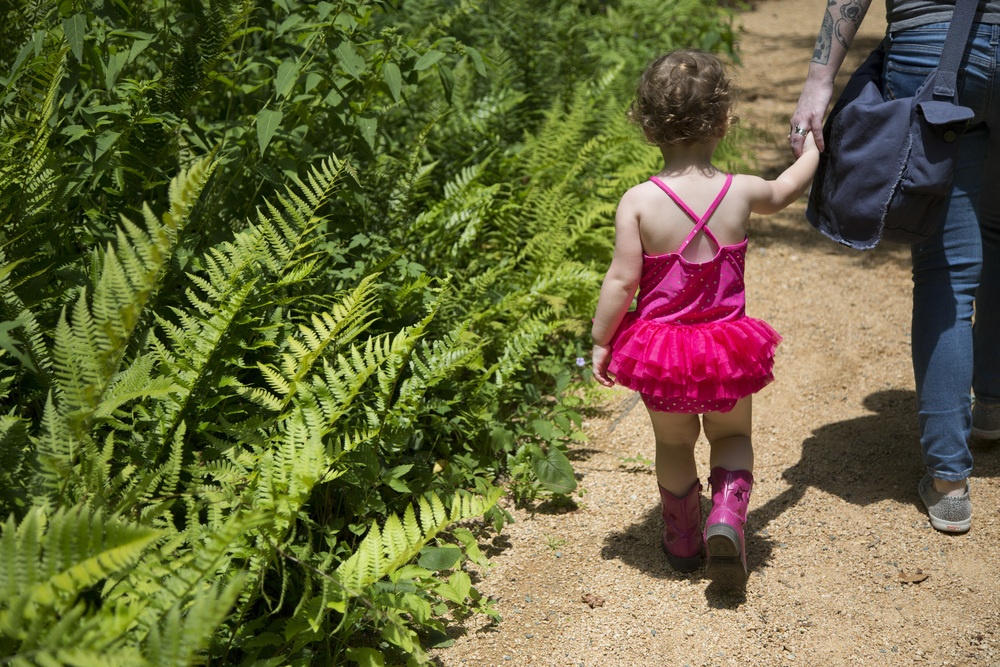 Fable Barker, 2, explores the North Carolina Botanical Garden in Chapel Hill with her mother, Megan Barker, on Thursday, July 17, 2014. The family roamed the garden while visiting Chapel Hill from Asheville.