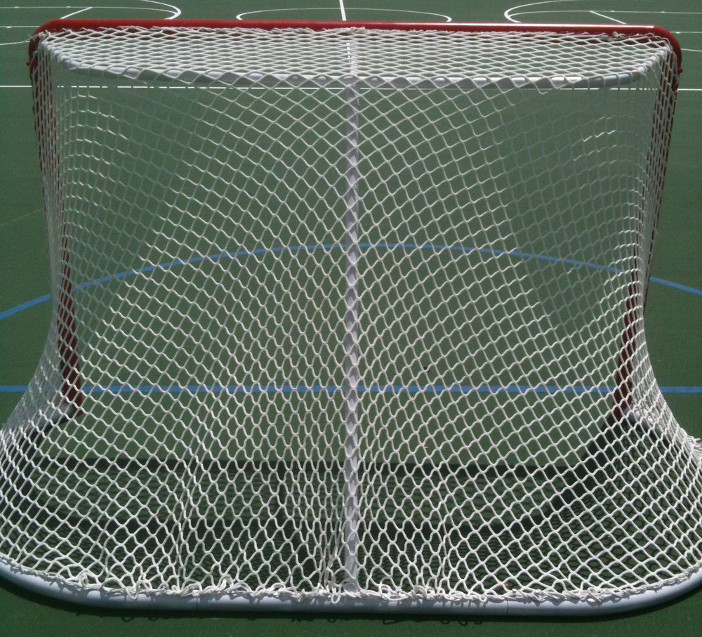 hockey goal refurbished 3.jpg