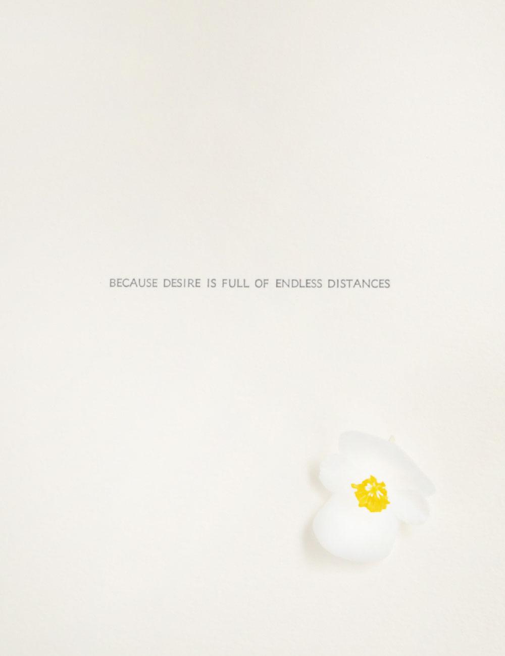 Desire_flower.jpg