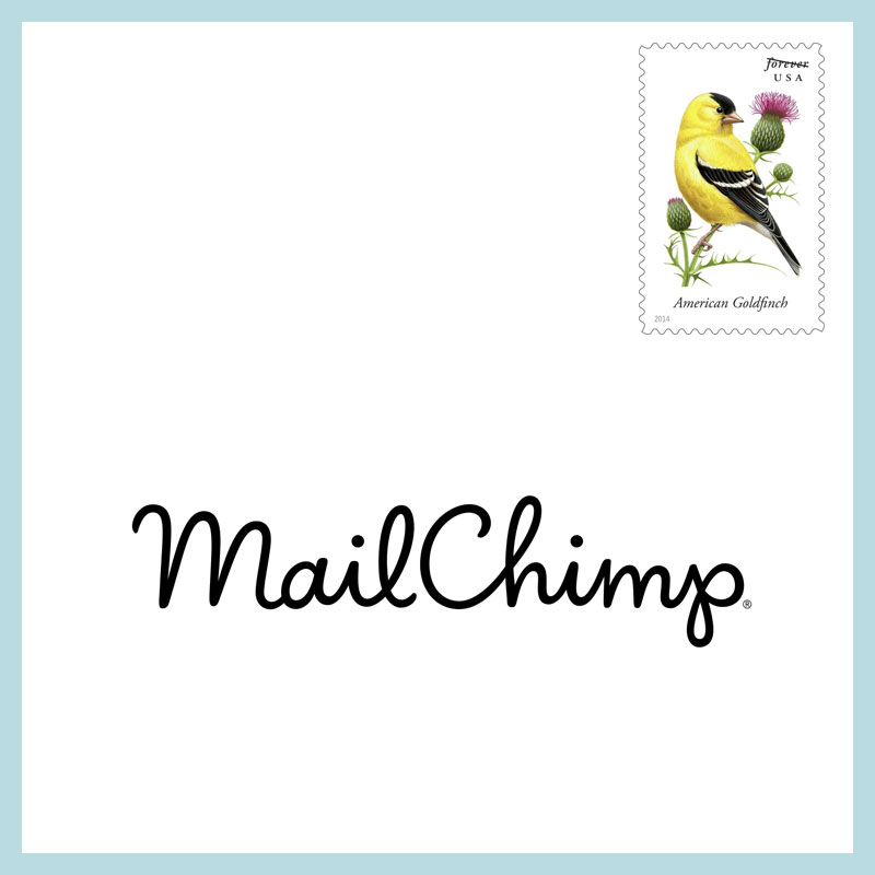 Mailchimp newsletter design by Stefani Greenwood