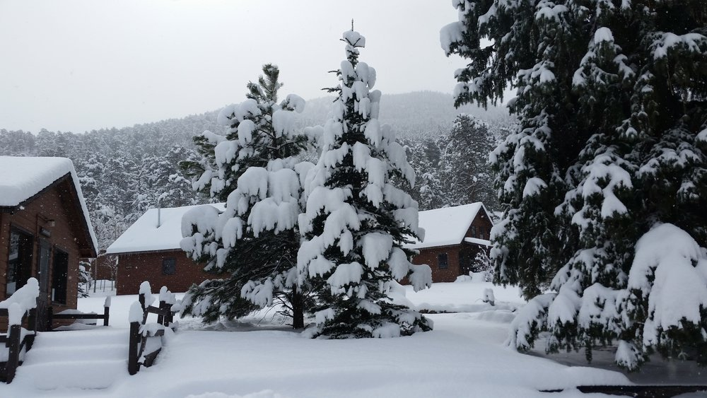 2016 snow 2.jpg