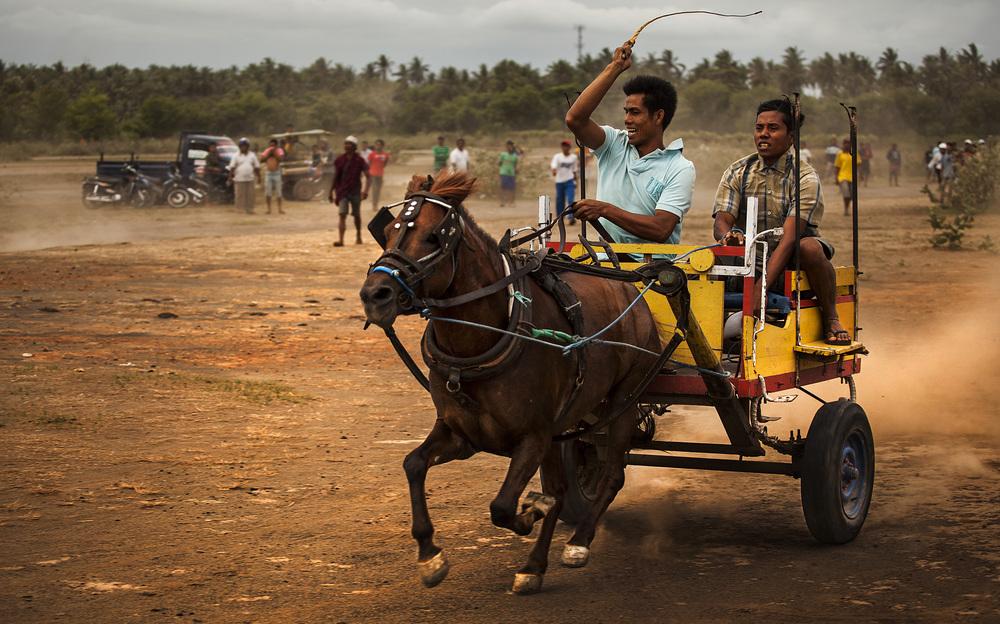 horse racing.jpg