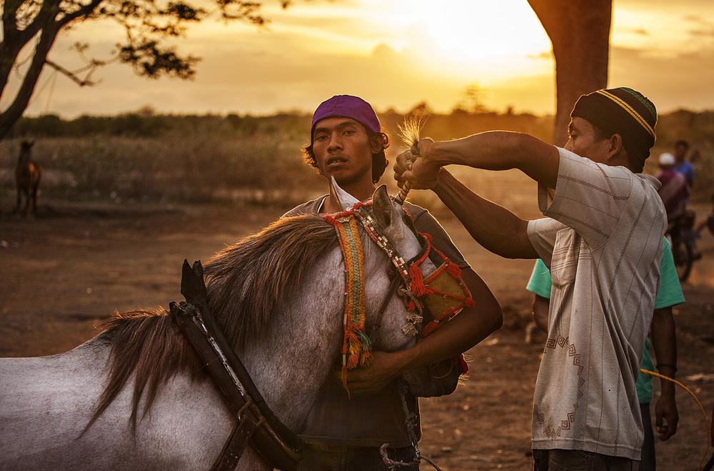 horse prep.jpg