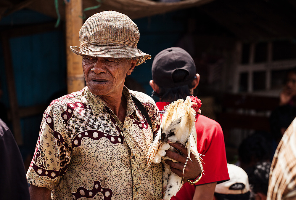 Man looking to sell his cock at the market in Rantepao, Sulawesi
