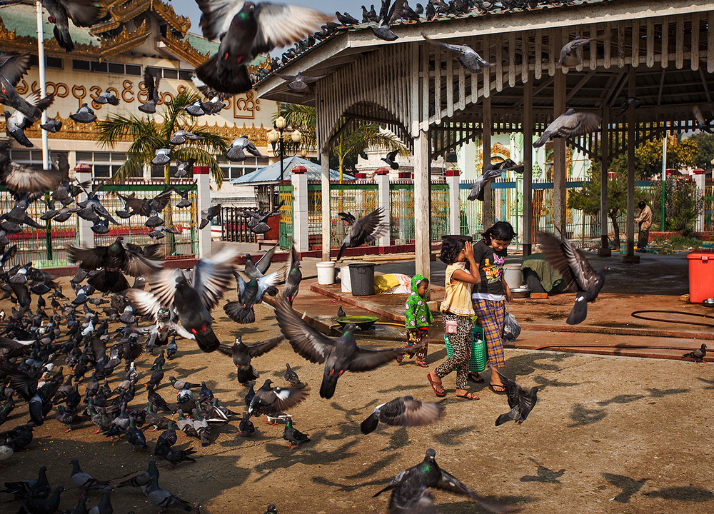 Kids walk through the pigeons that feed in front of the Mahamuni pagoda