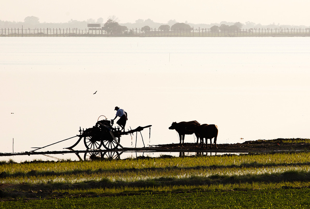 A farmer works with the Ubein Bridge in the background