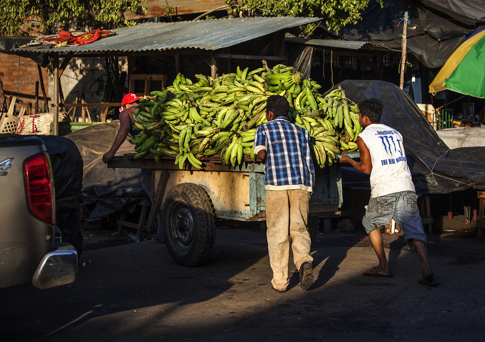 no shortage of bananas around these parts