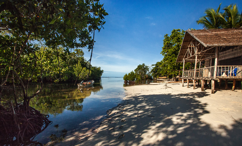 Our bungalows straddling the mangrove forest