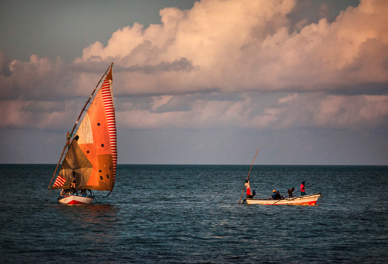 the dhow (sailboat)