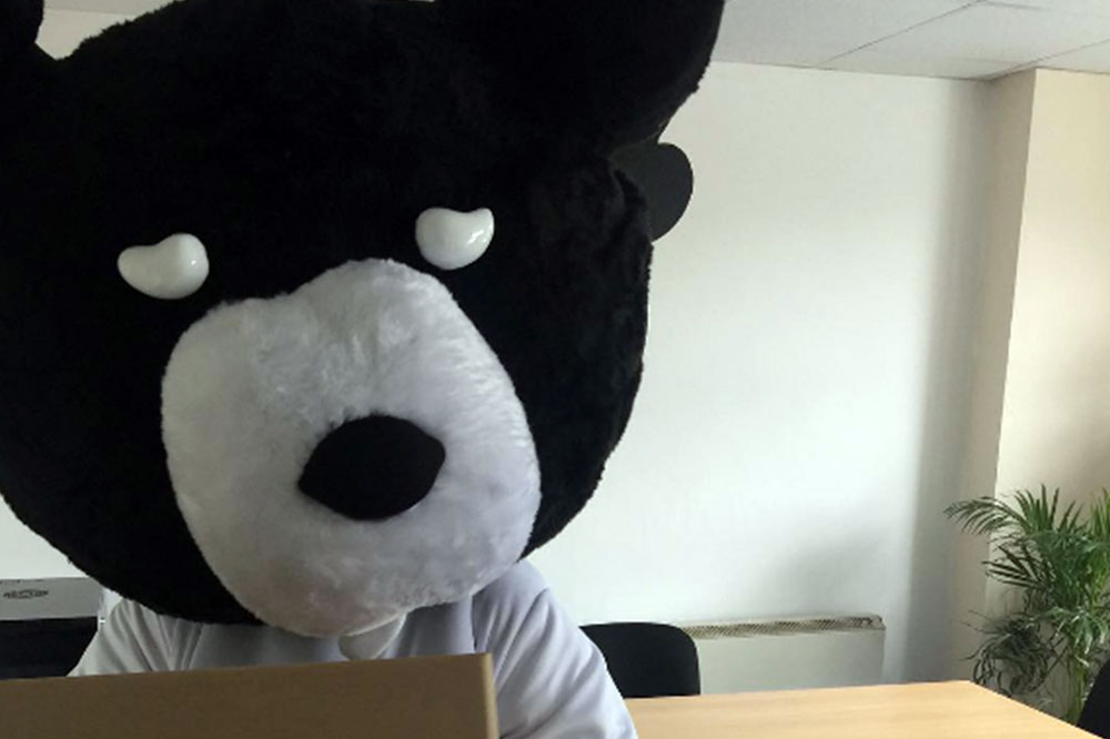 bearfaced-mascot.jpg