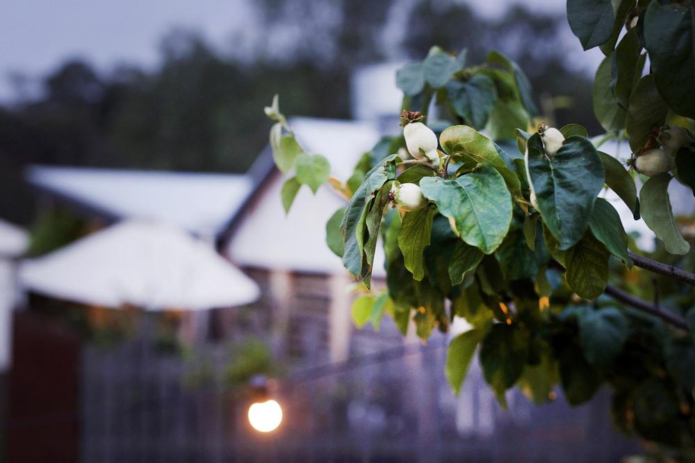 farm cafe wedding melbourne 7.jpg