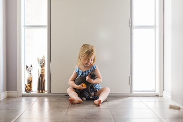 Just a girl and her kitty #melbournefamilyphotographer #family #mum #daughter #melbournechildphotographer  #childphotographer #childrensphotographer #childhoodunplugged #lemonadeandlenses #letthekids #featurememozi #mastinlabs #melbournephotographer #innerwest #lifestylephotography #catsofinstagram