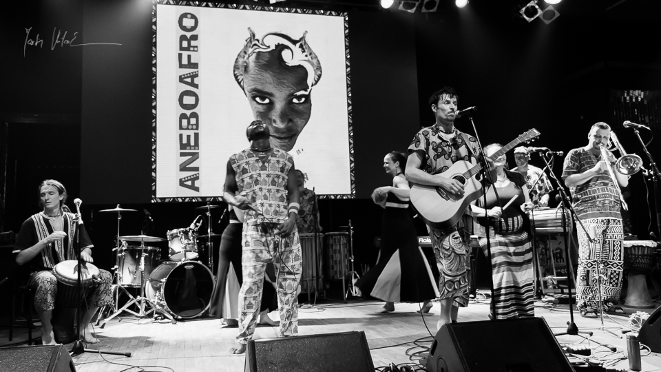 Aneboafro and Dub Artillery in concert-24.jpg