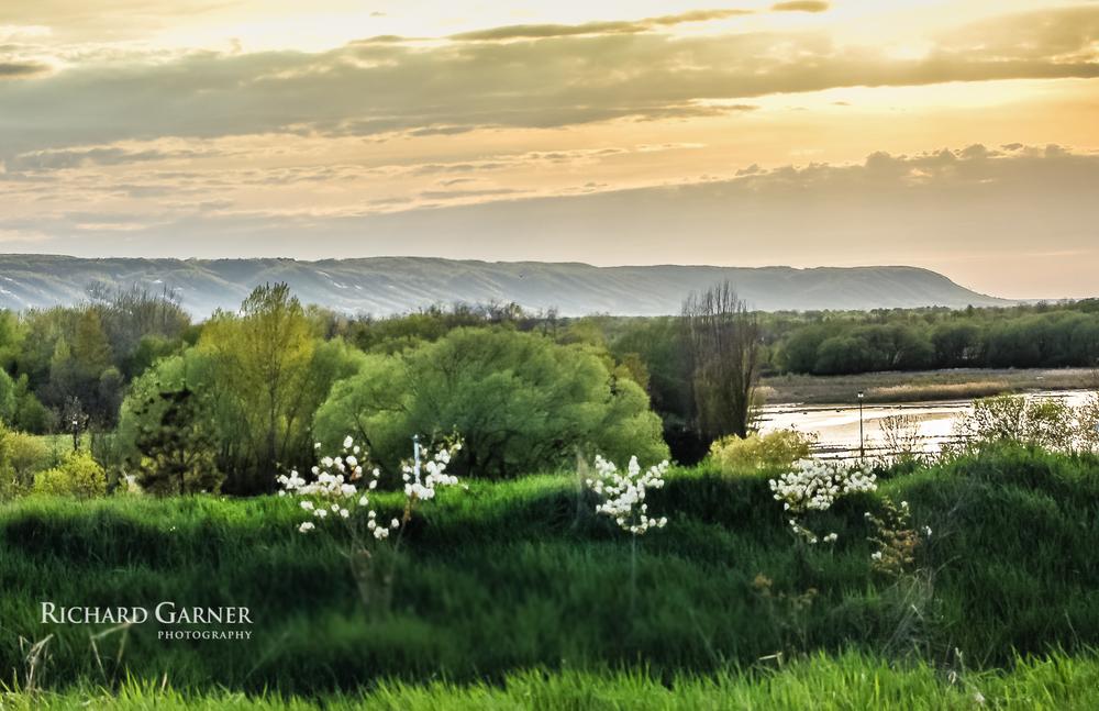Blue Mountain - Collingwood springtime