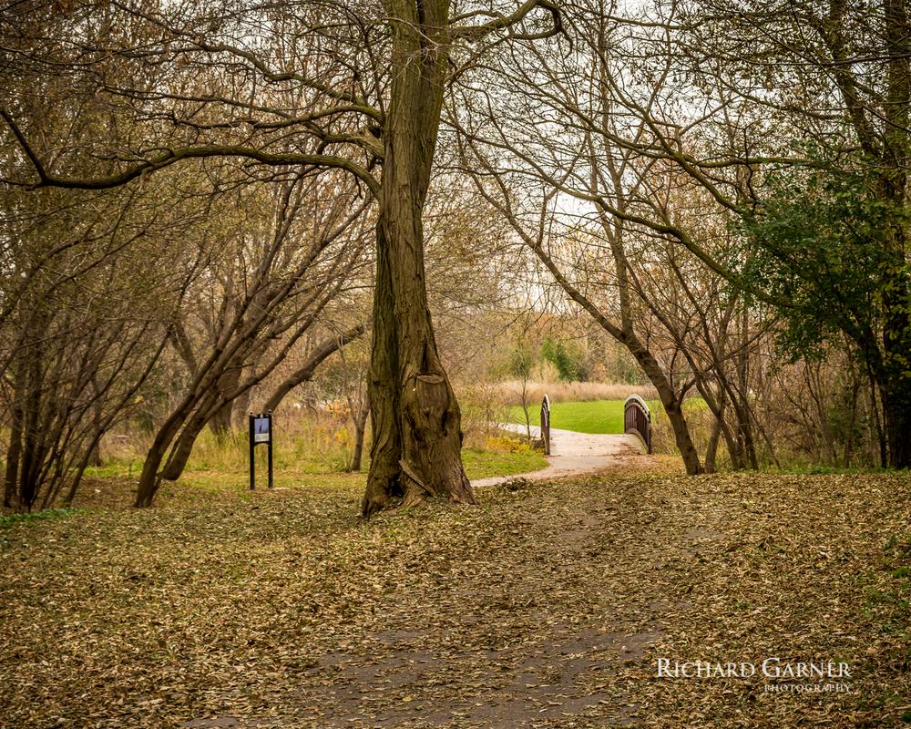 autumn @ Harbourview Park