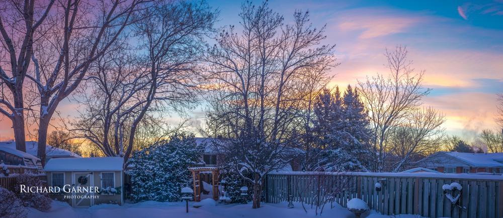 backyard panorama wnter 20140122.jpg