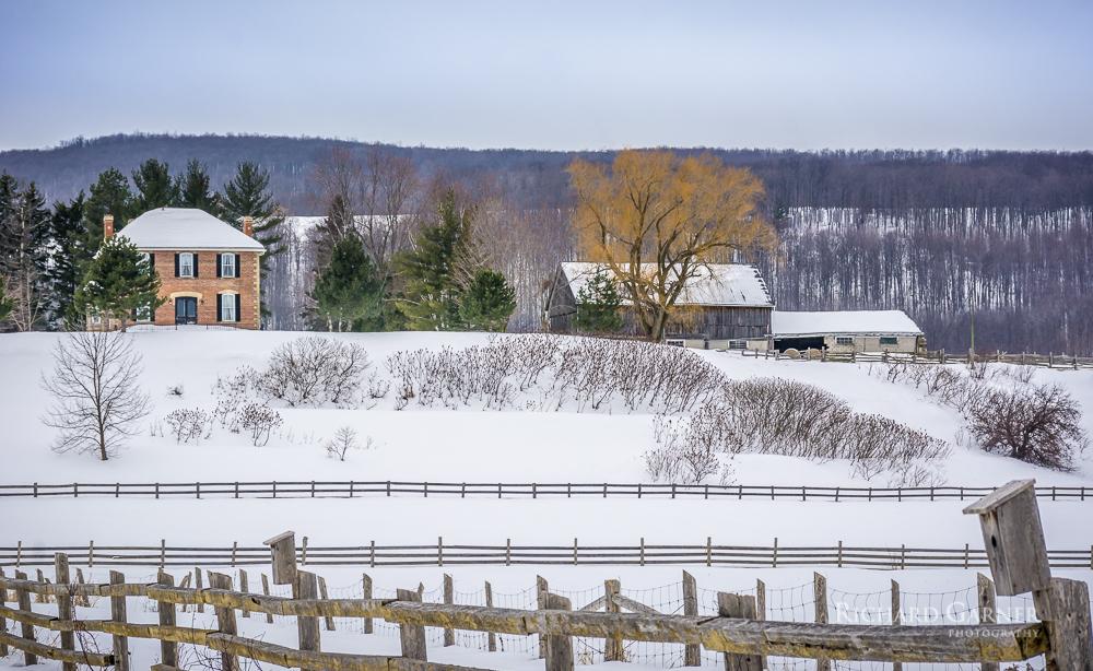 61 6th St. Horse Farm