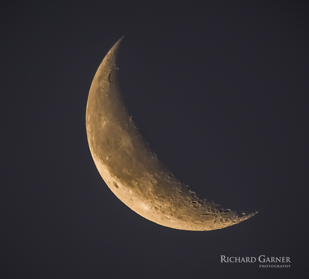 110 Early Morning Moon