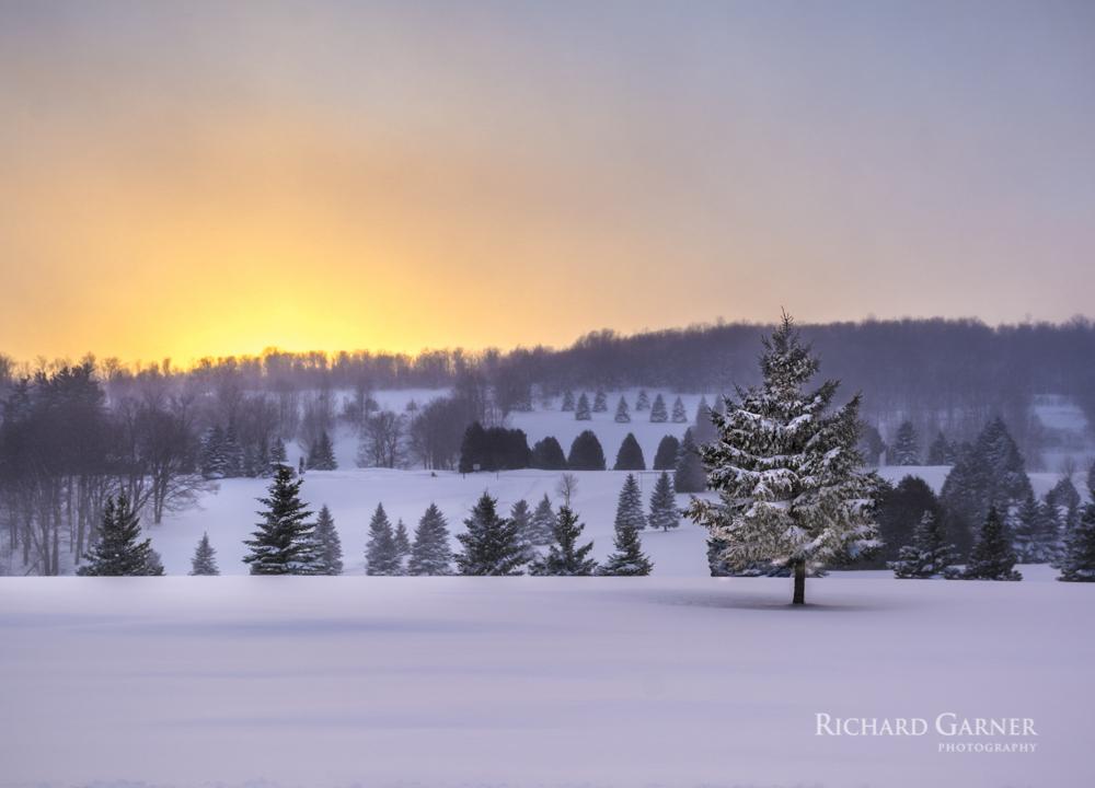 Duntroon sunset-1-150116-4999 x 3599.jpg