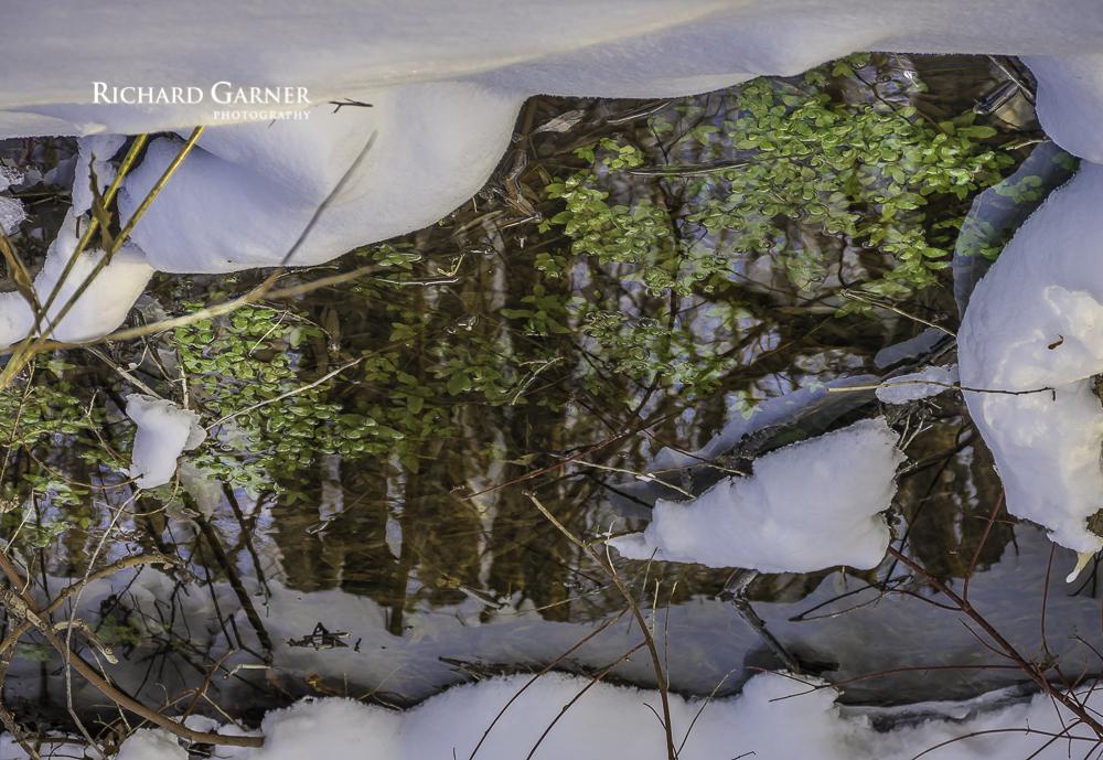 winter reflections JAN2014 HDR-1-150101-5660 x 3898.jpg