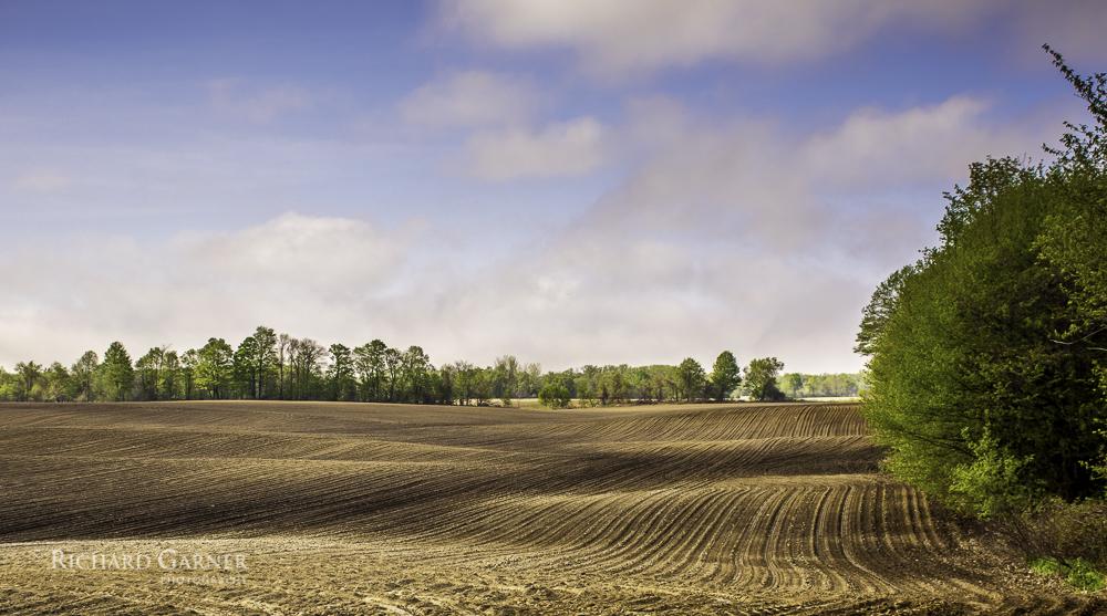 ploughed farm field-1.jpg