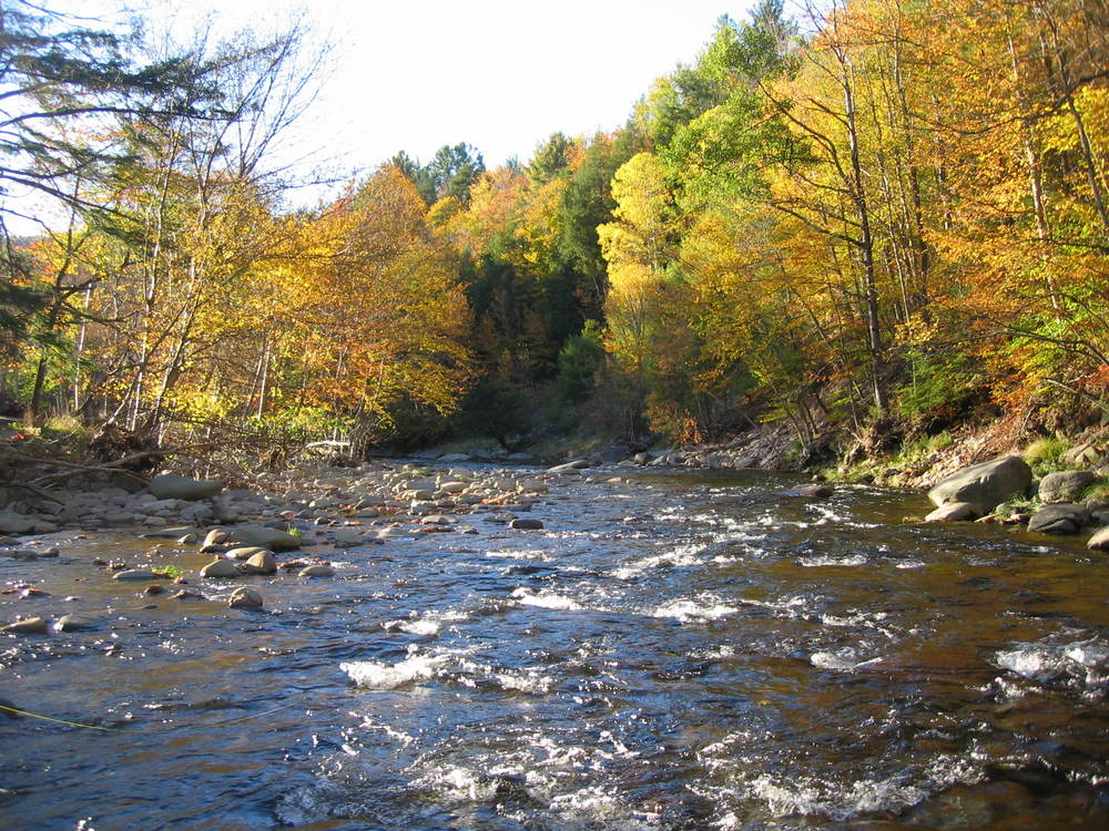 Neversink River, Claryville, NY