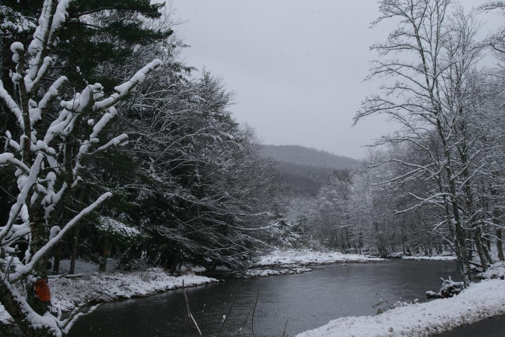 Neversink River, Claryville