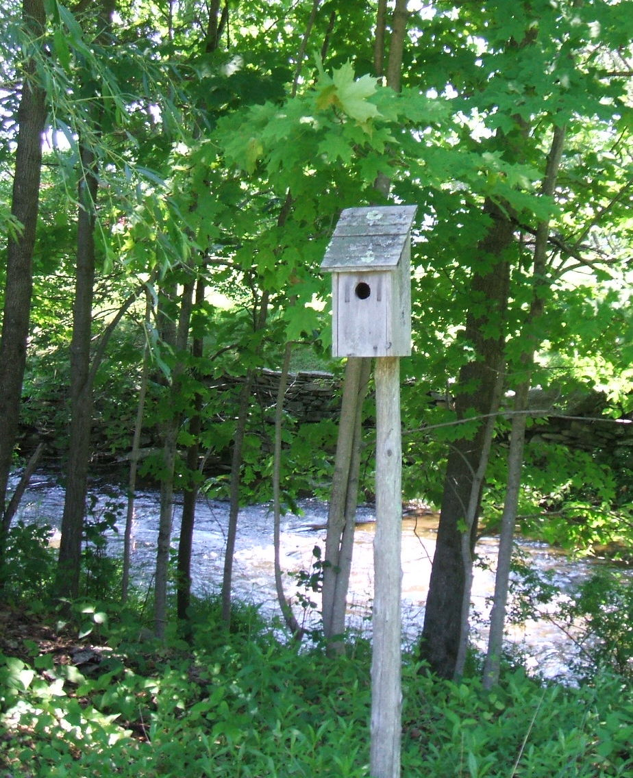 Creek Birdhouse.JPG