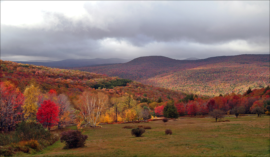 03_View_Fall_looking west.jpg