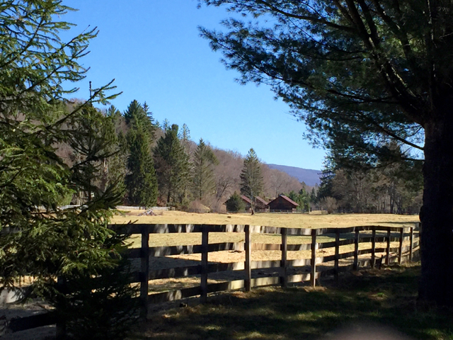 View from the corner of the property down the paddock toward the barns, along Frost Valley Rd.
