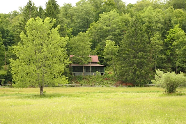 View of the farmhouse from across the paddock.