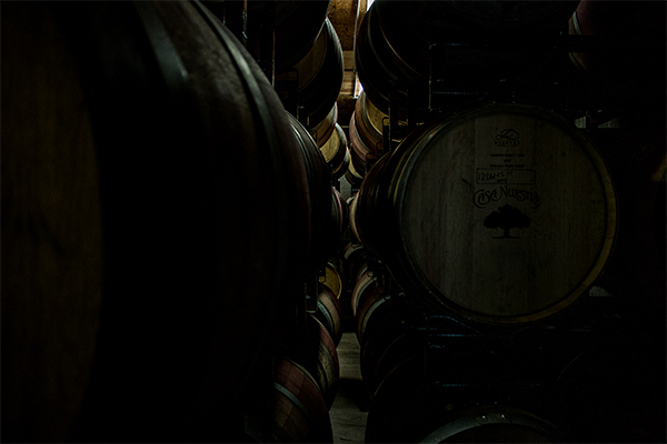CN_website-winery_600x400_0008_IMG_5354.jpg