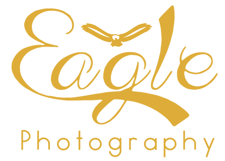 Jimmy Eagle Photography