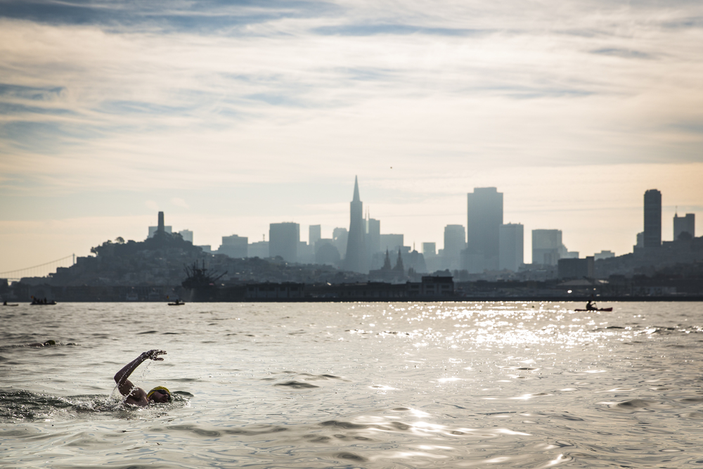 Over 100 swimmers take part in a Thanksgiving morning swim from Alcatraz to the Dolphin Club of San Francisco, Thursday morning. Many of the participants had made the swim several times, some well into the hundreds. The fastest swimmers finished just after 30 minutes while the slower swimmers finished completed the 1.2 mile swim in a little over an hour.