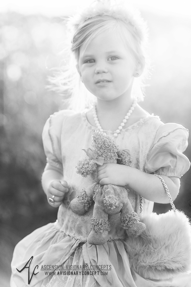 Southeast Indiana Family Photography: Family Farm, Fairytale, Princess