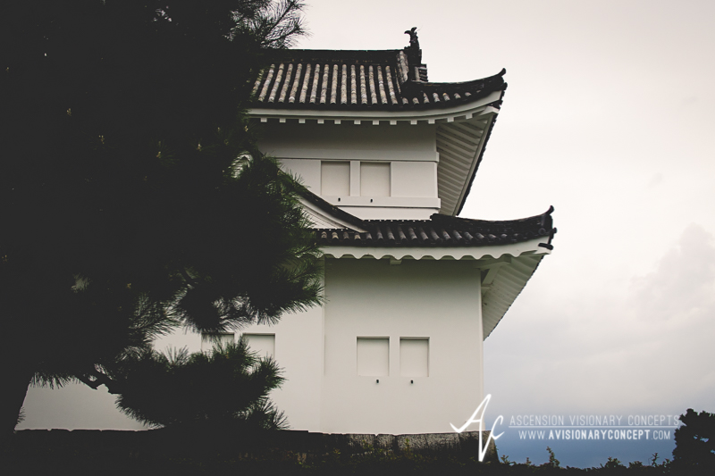 Osaka Castle - Olympus E-PL5 -Olympus M. 25mm 1.8 MSC